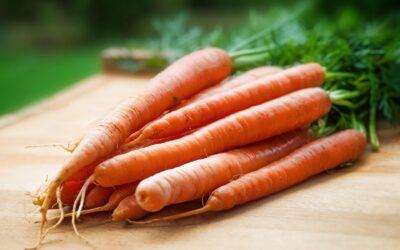 Crema de zanahorias y aguacate
