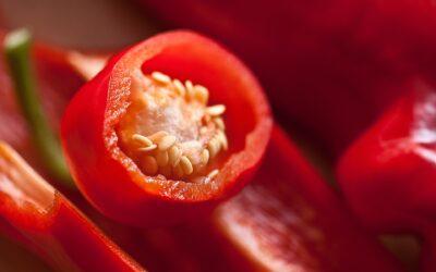Crema de pimiento rojo, aguacate y pepino